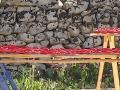pomodori contro parete effetto disegno