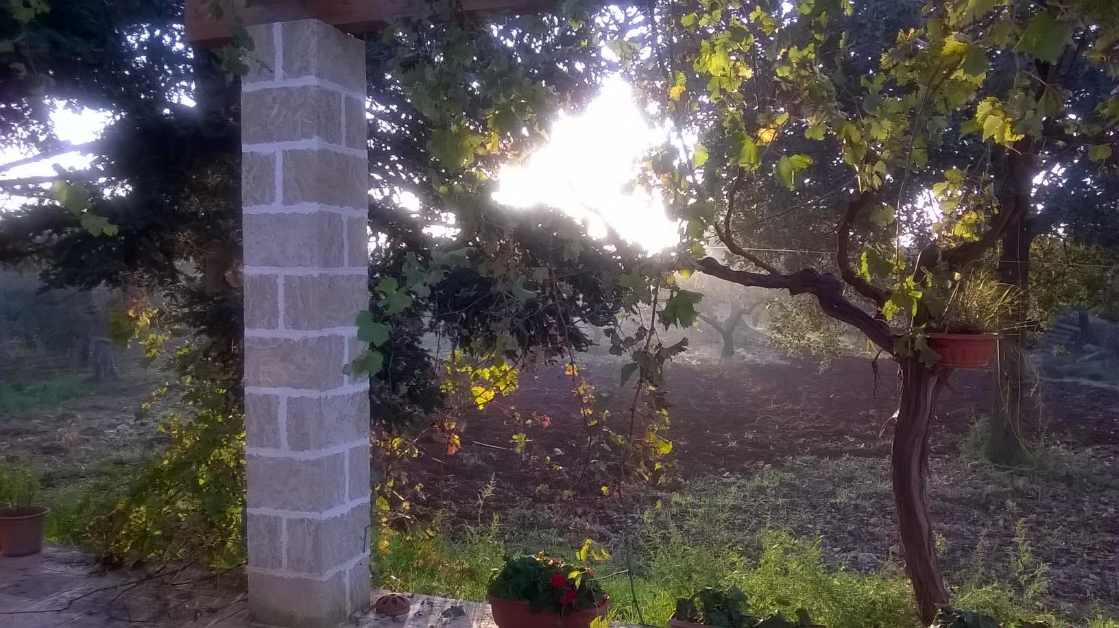 autunno 2015 1