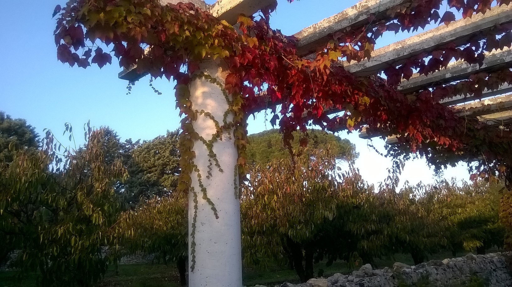 autunno 2015