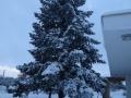 inverno (2)